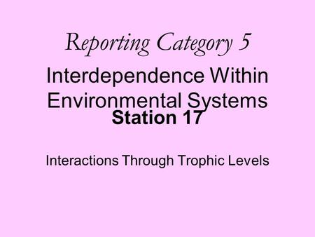 Station 17 Interactions Through Trophic Levels Reporting Category 5 Interdependence Within Environmental Systems.