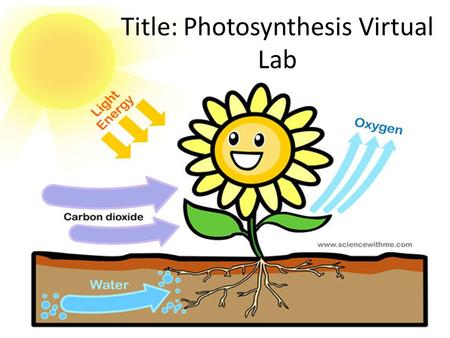 Title: Photosynthesis Virtual Lab. Instructions for Lab Write the Headings for each section. Write the information that follows each heading.