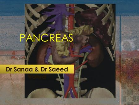 PANCREAS Dr Sanaa & Dr Saeed Vohra. OBJECTIVES By the end of this lecture the student should be able to : Describe the anatomical view of the pancreas.