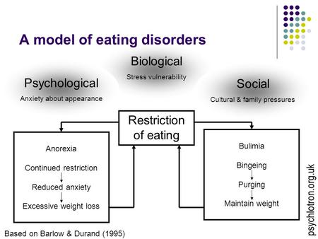 Biological Stress vulnerability A model of eating disorders Restriction of eating Social Cultural & family pressures Psychological Anxiety about appearance.