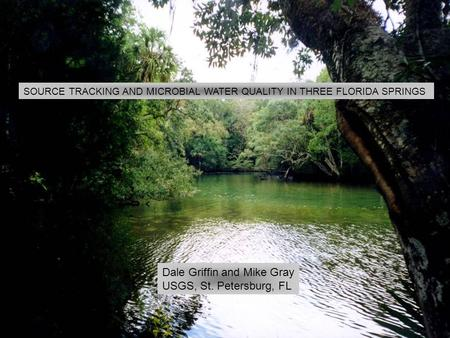SOURCE TRACKING AND MICROBIAL WATER QUALITY IN THREE FLORIDA SPRINGS Dale Griffin and Mike Gray USGS, St. Petersburg, FL.