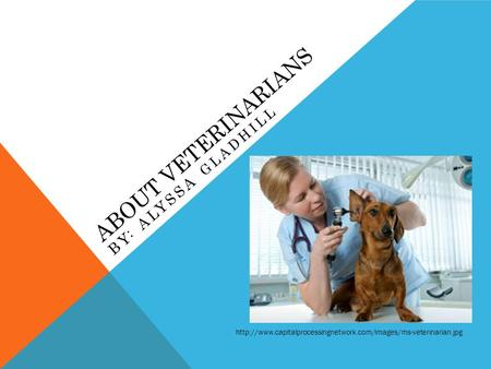 ABOUT VETERINARIANS BY: ALYSSA GLADHILL