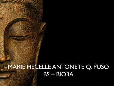 MARIE HECELLE ANTONETE Q. PUSO BS – BIO3A. AYURVEDA holistic approach to health that is designed to help people live long, healthy, and well- balanced.