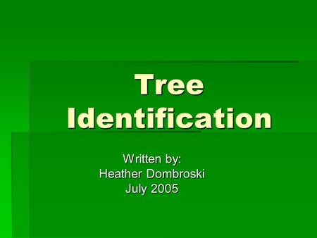 Tree Identification Written by: Heather Dombroski July 2005.