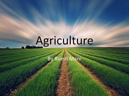 Agriculture By Ruedi Mani. Brief History of Agriculture Farming began in BC in the 1800s Fort Fraser was the first town to be farmed by non aboriginal.
