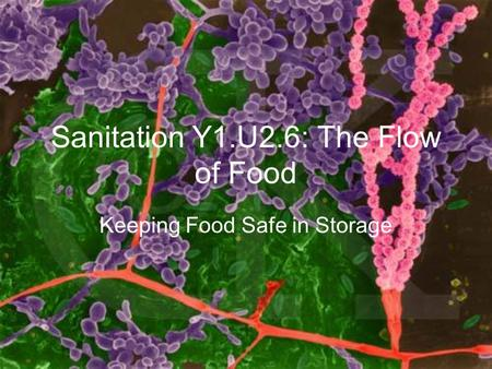 Sanitation Y1.U2.6: The Flow of Food Keeping Food Safe in Storage.
