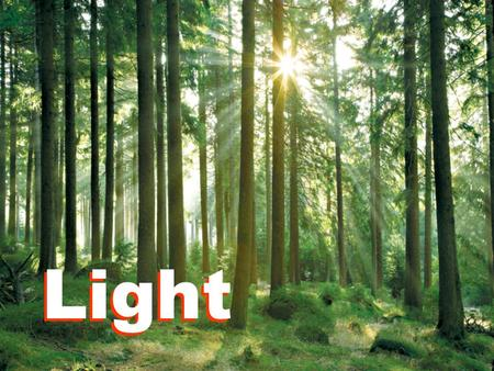 Light. 17.1 What is Light? Light is an important source of energy. It enables us to see. The Sun is the most important source of natural light. Without.