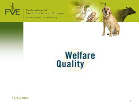 17/11/2007 1. 2 Welfare Quality® WhatWhat: EU project 6 th Framework (17 million €) PeriodPeriod: 2004-2009 PartnersPartners: 40 Institutes/Universities.