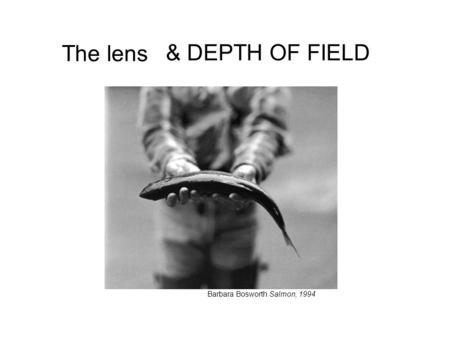 The lens Barbara Bosworth Salmon, 1994 & DEPTH OF FIELD.