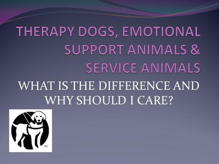WHAT IS THE DIFFERENCE AND WHY SHOULD I CARE?. Overview: Assistance Animals 101 What are therapy dogs vs service dogs vs emotional support animals? What.