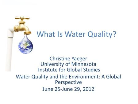 Christine Yaeger University of Minnesota Institute for Global Studies Water Quality and the Environment: A Global Perspective June 25-June 29, 2012 What.