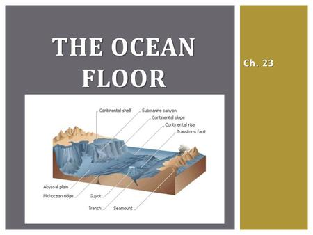 Ch. 23 THE OCEAN FLOOR. STUDYING THE OCEAN FLOOR Submersibles, satellites, and other technology allow scientists to study the structure and composition.