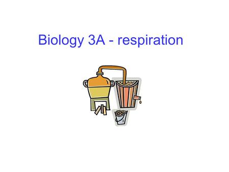 Biology 3A - respiration. Cellular respiration Provides energy for the cell Occurs in _________ cells Net equation: Occurs as a series of reactions, involving.