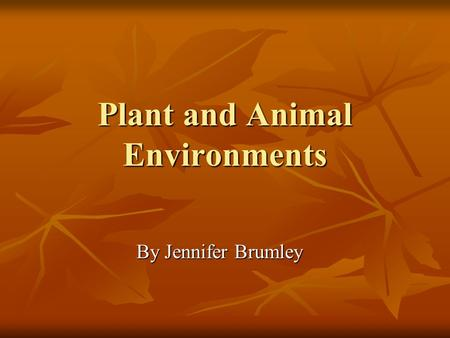 Plant and Animal Environments By Jennifer Brumley.
