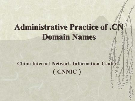1 China Internet Network Information Center ( CNNIC ) Administrative Practice of.CN Domain Names.
