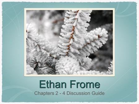 Ethan Frome Chapters 2 - 4 Discussion Guide. Chapter 2.