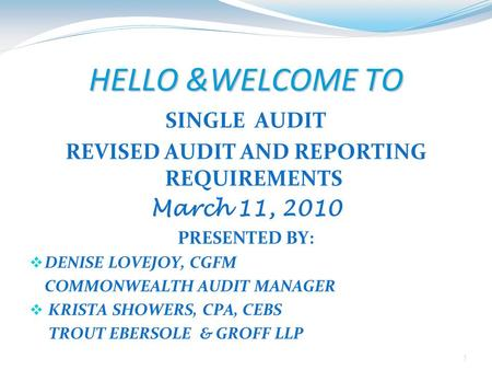 REVISED AUDIT AND REPORTING REQUIREMENTS