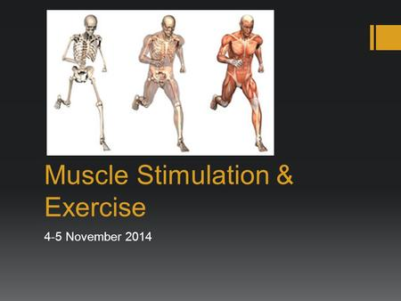 Muscle Stimulation & Exercise 4-5 November 2014. Response to Stimulation graded responses frequency  Muscles have graded responses – they contract to.