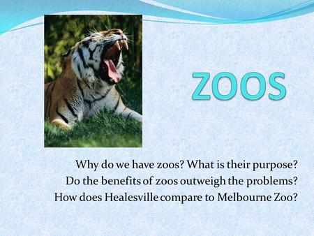 Why do we have zoos? What is their purpose? Do the benefits of zoos outweigh the problems? How does Healesville compare to Melbourne Zoo?