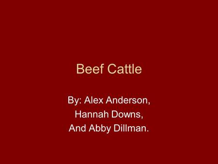 Beef Cattle By: Alex Anderson, Hannah Downs, And Abby Dillman.