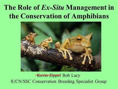 The Role of Ex-Situ Management in the Conservation of Amphibians Kevin Zippel Bob Lacy IUCN/SSC Conservation Breeding Specialist Group.