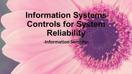 Information Systems Controls for System Reliability -Information Security-