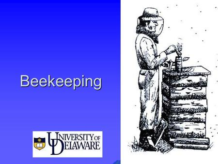Beekeeping. What is Beekeeping?  Beekeeping is Applied Bee Biology  Beekeeping is Anticipation not merely reaction  Beekeeping is Colony Population.