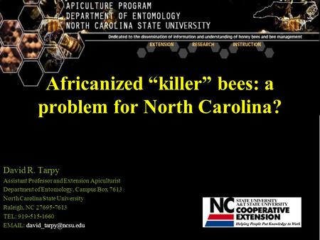"Africanized ""killer"" bees: a problem for North Carolina? David R. Tarpy Assistant Professor and Extension Apiculturist Department of Entomology, Campus."