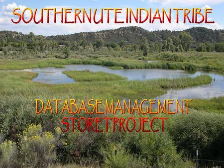 WHY THE NEED FOR DATABASE MANAGEMENT? Seven major rivers cross the reservation –24 Established sampling sites –12+ years accumulated water quality.