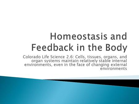 Homeostasis and Feedback in the Body