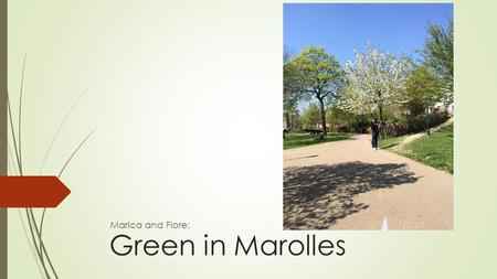 Green in Marolles Marica and Flore:. The Marolles.