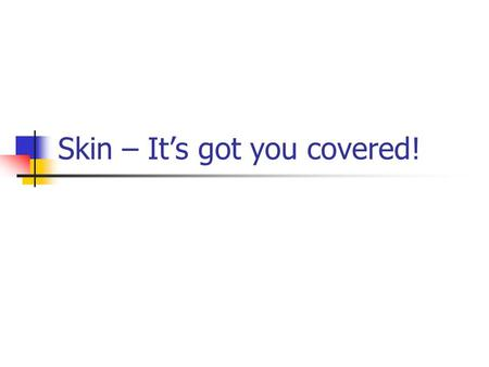 Skin – It's got you covered!. Skin Care – It's an Inside Job.