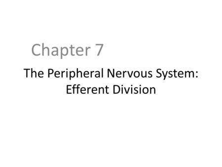 The Peripheral Nervous System: Efferent Division Chapter 7.