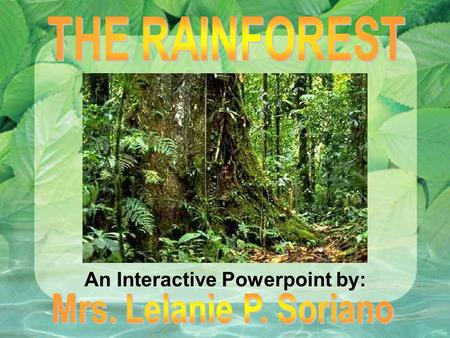 An Interactive Powerpoint by:. Rainforests have evolved over millions of years! Tropical rainforests are the Earth's oldest living ECOSYSTEMS! They are.