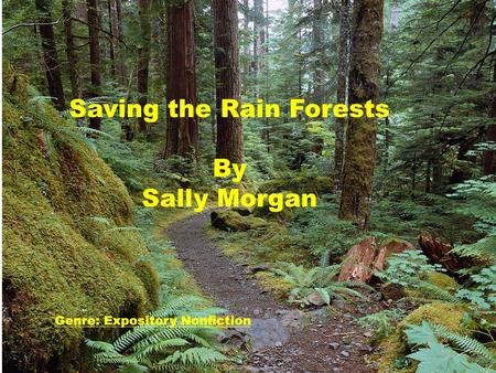 Saving the Rain Forests