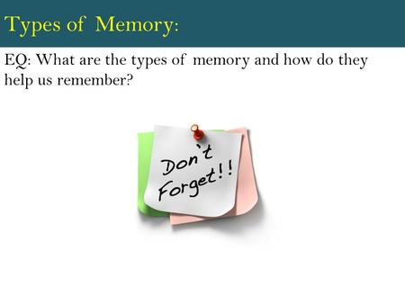 Types of Memory: EQ: What are the types of memory and how do they help us remember?