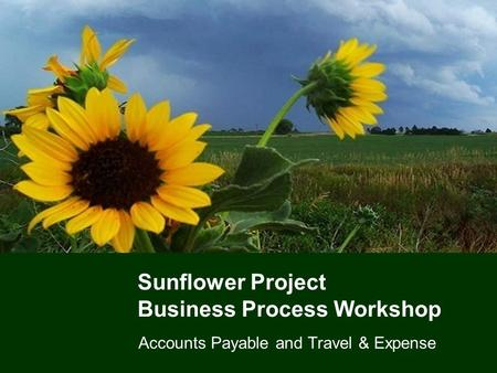 Sunflower Project Business Process Workshop Accounts Payable and Travel & Expense.