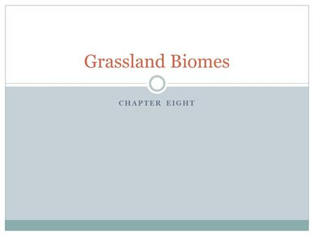 CHAPTER EIGHT Grassland Biomes. Grass Looking outside at grass, you don't usually think much of it However, grass  Feeds billions of organisms worldwide.