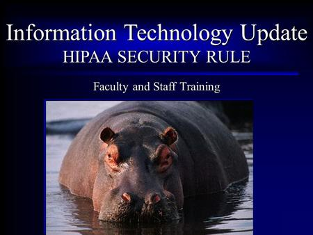 Information Technology Update HIPAA SECURITY RULE Faculty and Staff Training.
