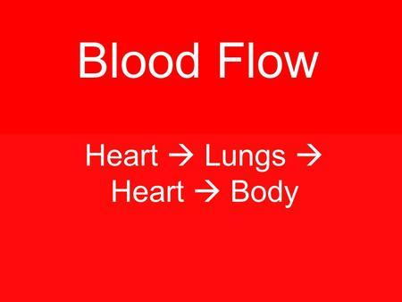 Blood Flow Heart  Lungs  Heart  Body. AORTA - artery Vena Cava - vein Atria Ventricles.