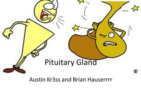 Pituitary Gland Austin Kr3ss and Brian Hauserrrr.