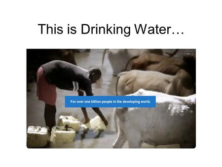 This is Drinking Water…. Pennies for Pur TM Water More than 4,000 children die every day from diseases caused by drinking unsafe water. Your CHS Green.