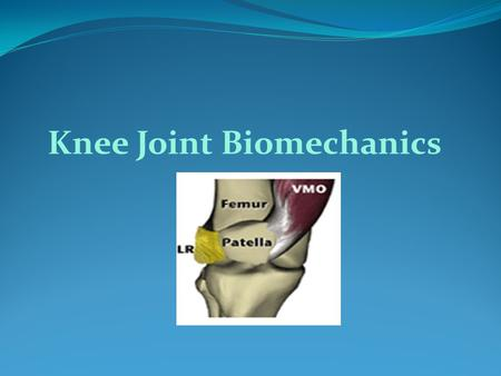 Knee Joint Biomechanics. Knee is the largest joint in the body. It is a modified hing joint (ginglymus).  Transmit Loads  Participate in motion  Provides.