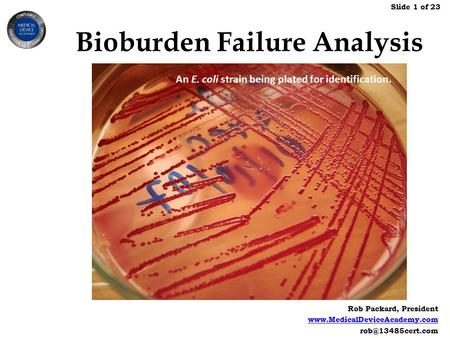 Rob Packard, President  Slide 1 of 23 Bioburden Failure Analysis An E. coli strain being plated for identification.