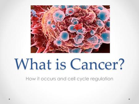 What is Cancer? How it occurs and cell cycle regulation.