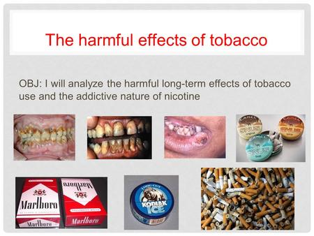 The harmful effects of tobacco OBJ: I will analyze the harmful long-term effects of tobacco use and the addictive nature of nicotine.