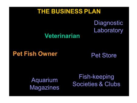 THE BUSINESS PLAN Veterinarian Pet Store Pet Fish Owner Aquarium Magazines Fish-keeping Societies & Clubs Diagnostic Laboratory.