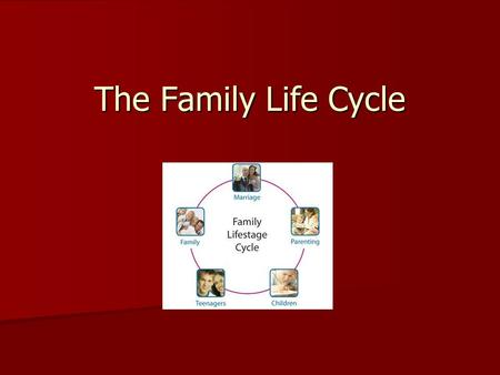 The Family Life Cycle.