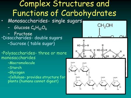 Complex Structures and Functions of Carbohydrates