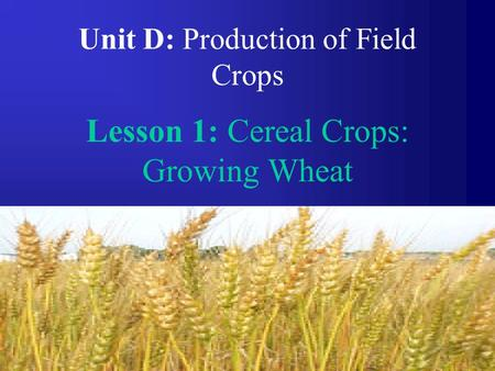 1 Unit D: Production of Field Crops Lesson 1: Cereal Crops: Growing Wheat.